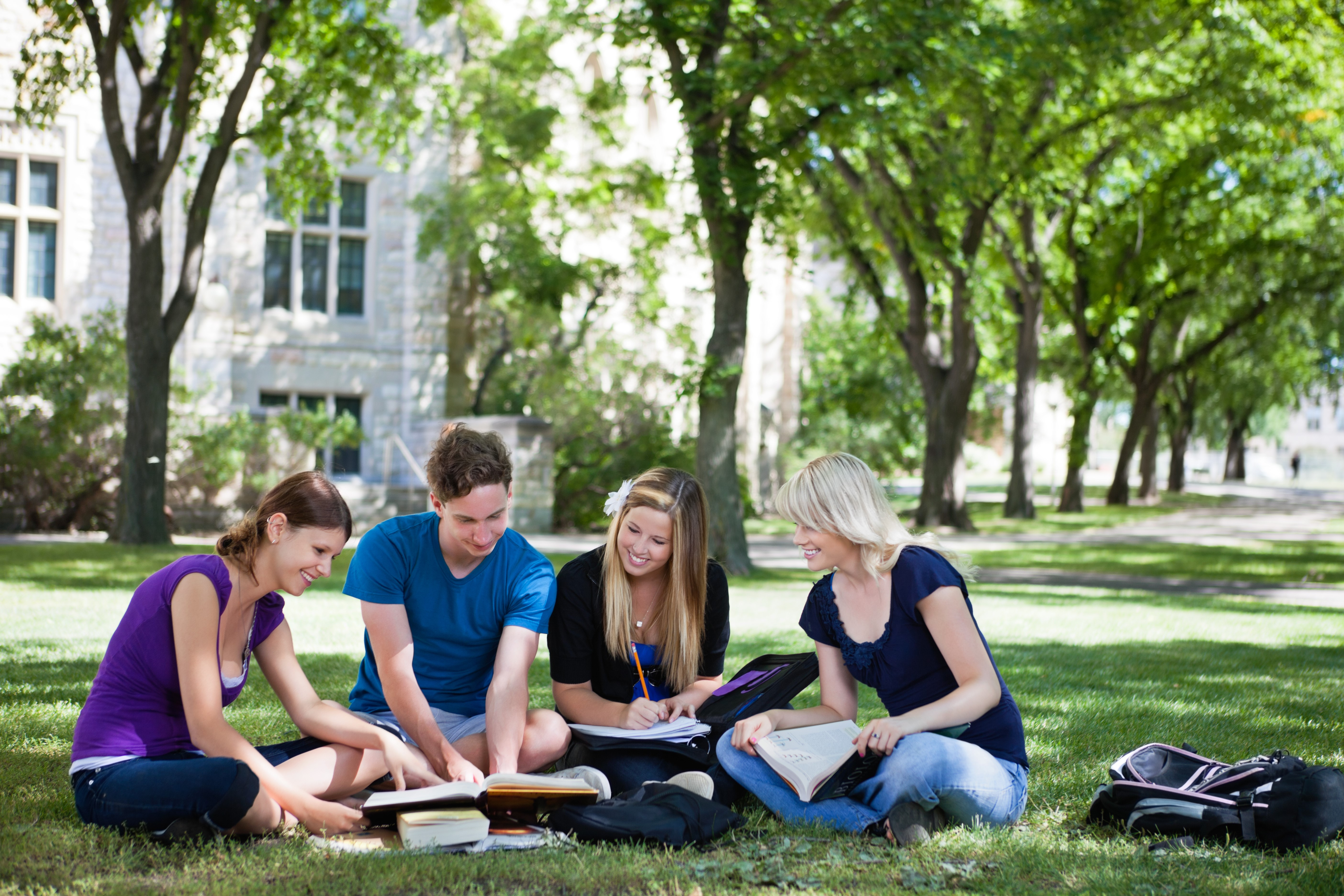 College students studying in circle